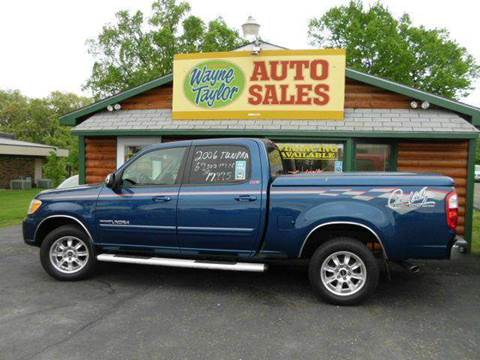 2006 Toyota Tundra for sale at Wayne Taylor Auto Sales in Detroit Lakes MN