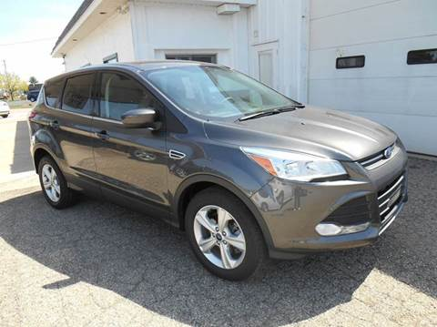 2015 Ford Escape for sale at Unity Motors LLC in Jenison MI