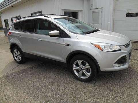 2014 Ford Escape for sale at Unity Motors LLC in Jenison MI