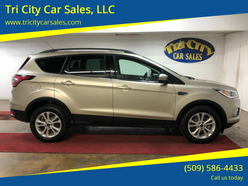 2017 Ford Escape for sale at Tri City Car Sales, LLC in Kennewick WA