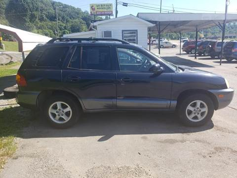 2004 Hyundai Santa Fe for sale at Knoxville Wholesale in Knoxville TN