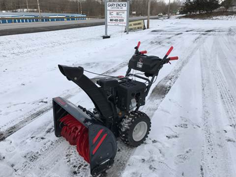Troy-Bilt Storm 3090 for sale in Oneonta, NY