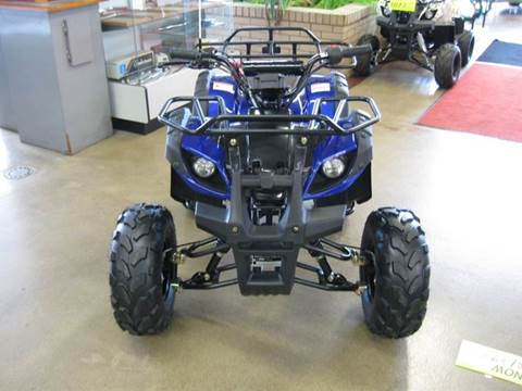 2014 Ice Bear 125 ATV
