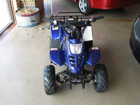 2017 Ice Bear 110ATV