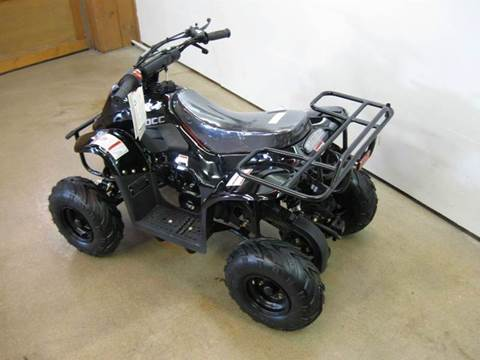 2017 Ice Bear ATV110