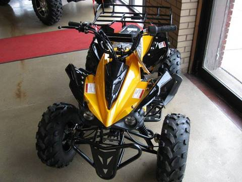 2017 Ice Bear ATV 125 Sport