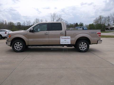 2013 Ford F-150 for sale at EFFINGHAM AUTO in Effingham IL