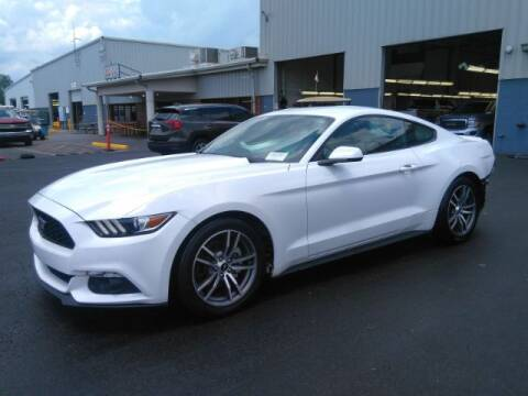 2015 Ford Mustang for sale at Adams Auto Group Inc. in Charlotte NC