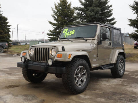 2003 Jeep Wrangler Sahara for sale at FOWLERVILLE FORD in Fowlerville MI
