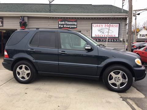 2002 Mercedes-Benz M-Class for sale at Grey Horse Motors in Hamilton OH