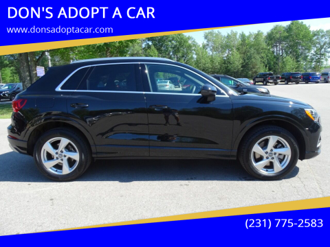 2020 Audi Q3 for sale at DON'S ADOPT A CAR in Cadillac MI