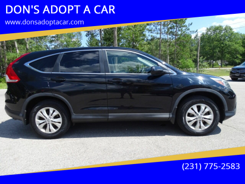 2012 Honda CR-V for sale at DON'S ADOPT A CAR in Cadillac MI