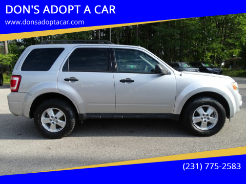 2010 Ford Escape for sale at DON'S ADOPT A CAR in Cadillac MI