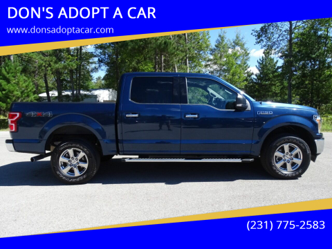 2020 Ford F-150 for sale at DON'S ADOPT A CAR in Cadillac MI