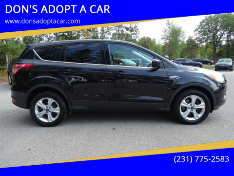 2014 Ford Escape for sale at DON'S ADOPT A CAR in Cadillac MI