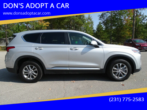2019 Hyundai Santa Fe for sale at DON'S ADOPT A CAR in Cadillac MI