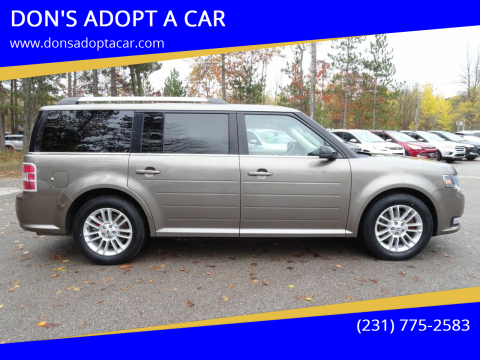 2013 Ford Flex for sale at DON'S ADOPT A CAR in Cadillac MI