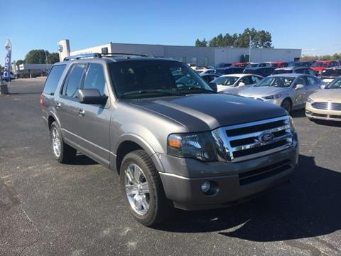 2010 Ford Expedition for sale in Greenville MI