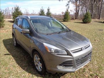 2014 Ford Escape for sale in Greenville, MI