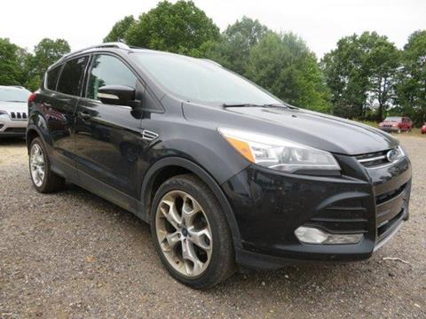 used 2013 ford escape for sale in rockford mi. Black Bedroom Furniture Sets. Home Design Ideas