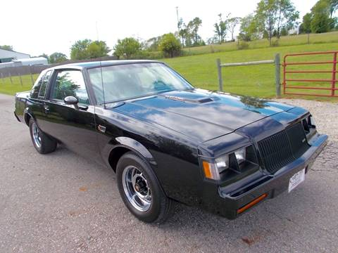 1987 Buick Regal for sale at 500 CLASSIC AUTO SALES in Knightstown IN