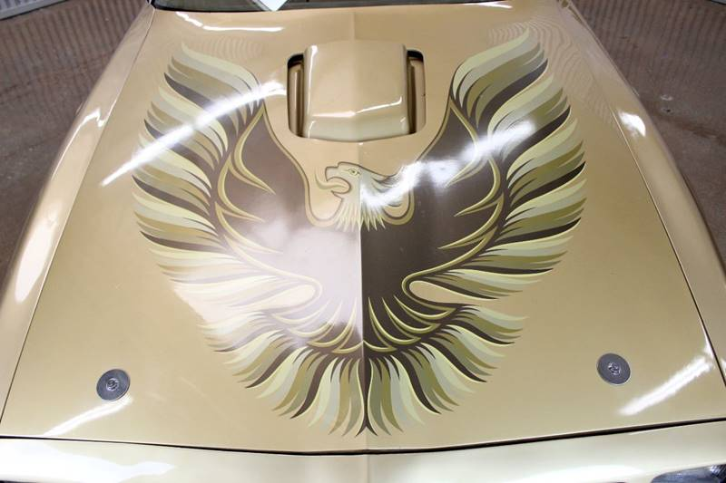 1979 Pontiac Firebird Trans Am for sale at Evolve Motors in Chicago IL
