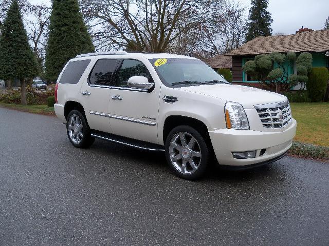 2011 CADILLAC ESCALADE LUXURY AWD 4DR SUV white 2011 cadillac escalade awd lu