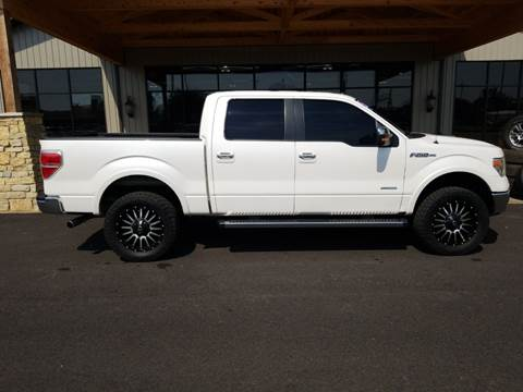 2013 Ford F-150 for sale at Premier Auto Source INC in Terre Haute IN