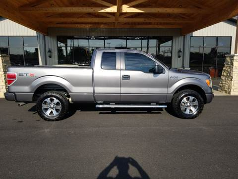 2012 Ford F-150 for sale at Premier Auto Source INC in Terre Haute IN