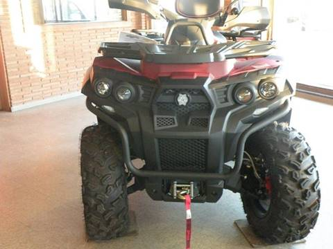 2016 Odes ASSAILANT 800 for sale at JENTSCH MOTORS in Hearne TX