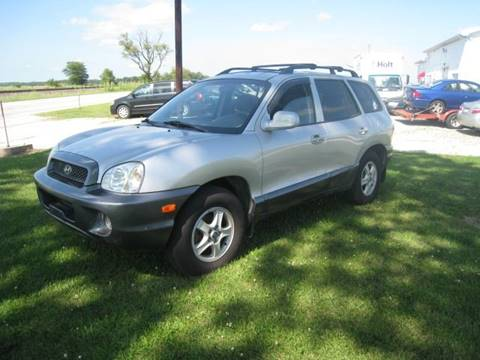 2002 Hyundai Santa Fe for sale at BEST CAR MARKET INC in Mc Lean IL