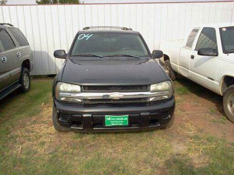 2004 Chevrolet TrailBlazer for sale at 4 B CAR CORNER in Anadarko OK