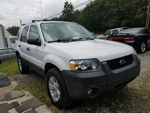 2006 Ford Escape for sale in Mount Carmel, TN