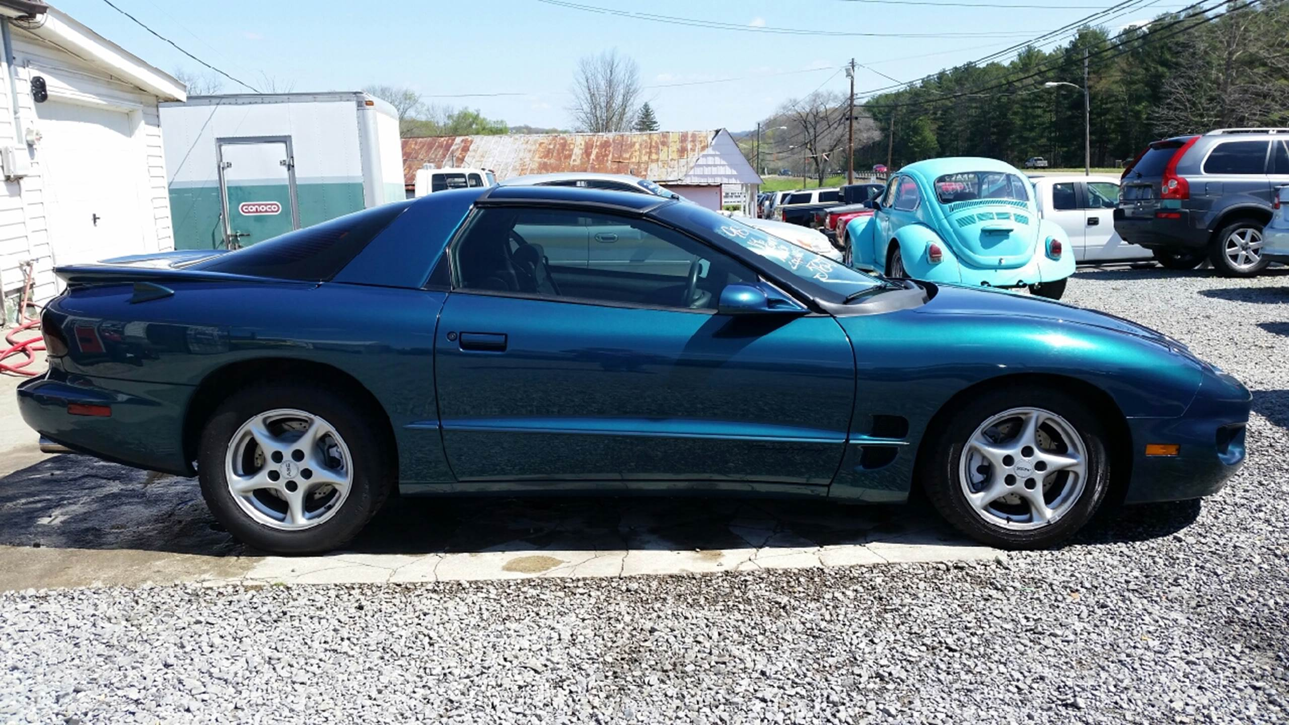 1998 Pontiac Firebird for sale in Mount Carmel, TN