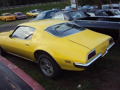 1970 Pontiac Firebird for sale at Marshall Motors Classics in Jackson MI