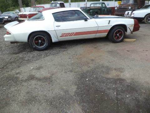 1981 Chevrolet Camaro for sale at Marshall Motors Classics in Jackson Michigan MI
