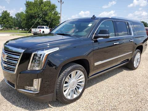 2020 Cadillac Escalade ESV for sale at Art Hossler Auto Plaza Inc - New GM in Canton IL