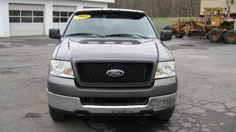 2005 Ford F-150 XLT for sale at SHIRN'S in Williamsport PA