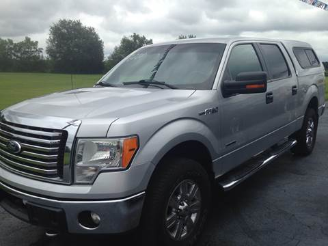 2011 Ford F-150 for sale at EAGLE ONE AUTO SALES in Leesburg OH