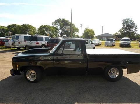 1976 Chevrolet Silverado 1500 Classic for sale in Columbus, MN