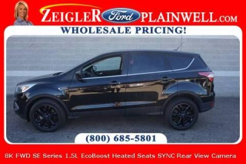 2017 Ford Escape for sale at Zeigler Ford of Plainwell- michael davis in Plainwell MI