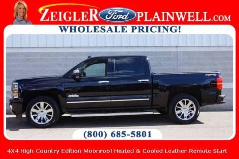 2014 Chevrolet Silverado 1500 for sale at Zeigler Ford of Plainwell- michael davis in Plainwell MI