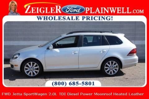 2013 Volkswagen Jetta for sale at Zeigler Ford of Plainwell- michael davis in Plainwell MI