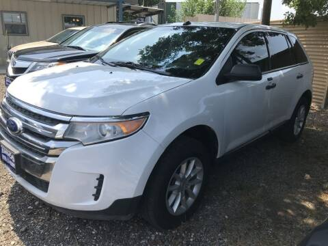 2014 Ford Edge for sale at AMIGO USED CARS in Houston TX