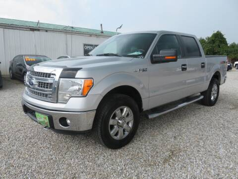 2014 Ford F-150 for sale at Low Cost Cars in Circleville OH