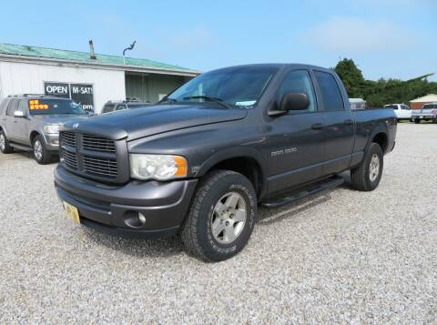 2003 Dodge Ram Pickup 1500 for sale at Low Cost Cars in Circleville OH