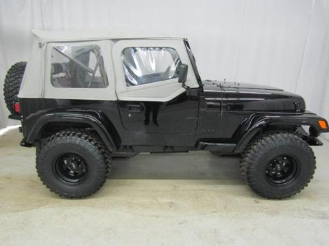 1993 Jeep Wrangler for sale in South Haven, MI