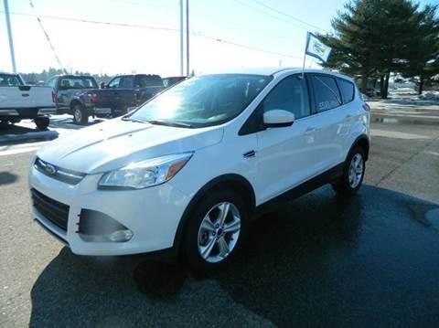 2014 Ford Escape for sale in Quinnesec MI