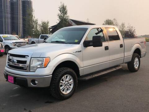 2013 Ford F-150 for sale at Snyder Motors Inc in Bozeman MT