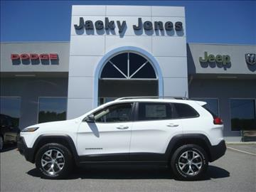 2017 Jeep Cherokee for sale in Hayesville, NC